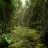 سباق الغابات