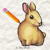 تعليم رسم ارنب