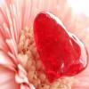 لعبة 5 اختلافات  في صور عيد الحب