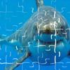 لعبة بازل صورة سمكة القرش