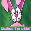 الاشياء المخفية في قصة  الأرنب