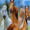 لعبة بازل صورة الخيول